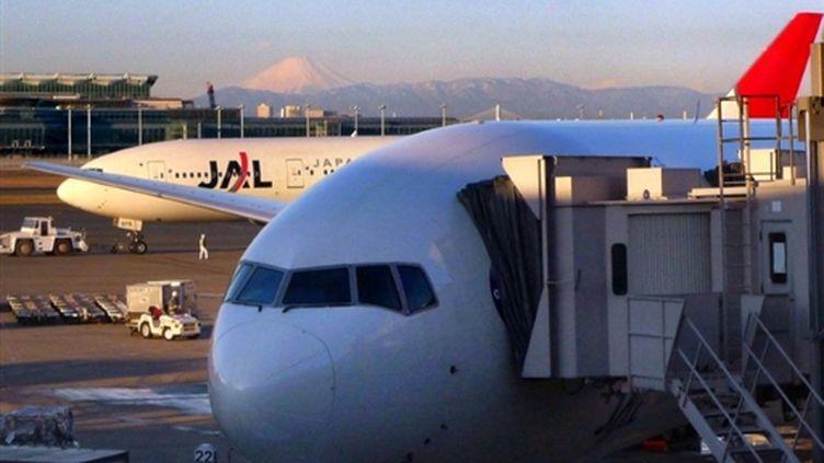 Des avions de la JAL, sur l'aéroport de Tokyo Haneda, le 15/01/2010 (AFP/Kazuhiro Nogi)