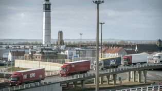Des camions à l'entrée du port de Calais (Pas-de-Calais), le 22 novembre 2016. (PHILIPPE HUGUEN / AFP)