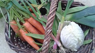 Les légumes du potager, pour un bouillon des cinq vertus. (  FRANCETV INFO )