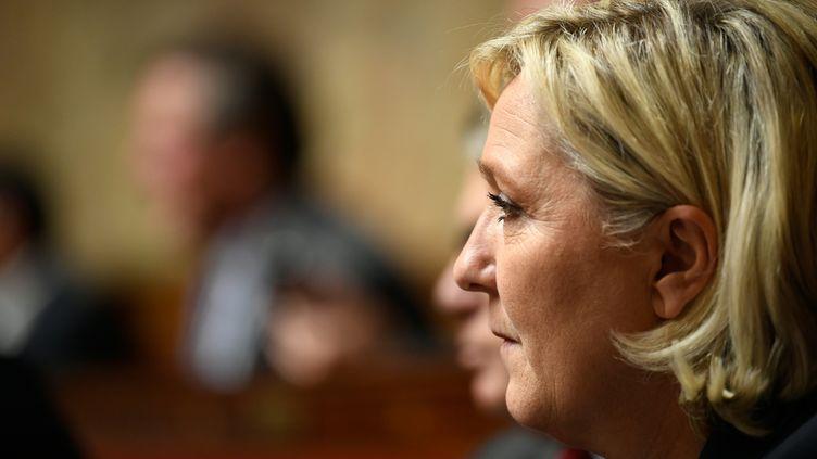 La présidente du FN, Marine Le Pen, à l'Assemblée nationale, le 24 octobre 2017. (ERIC FEFERBERG / AFP)