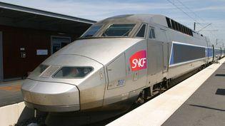 Un TGV à quai en gare de Saint-Malo (Ille-et-Vilaine), le 23 mars 2017. (PHOTO12 / GILLES TARGAT / AFP)