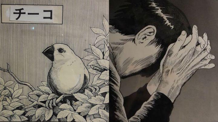 """""""Tchiko"""" et """"L'homme sans talent"""" de Yoshiharu Tsuge (LAETITIA DE GERMON / RADIO FRANCE)"""