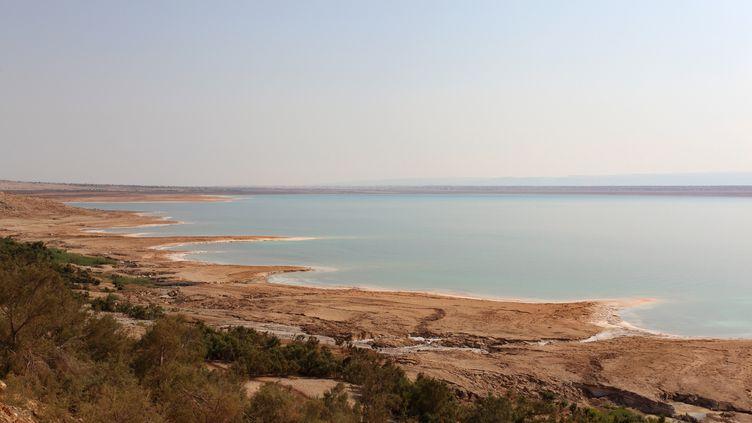 Les côtes de la mer Morte en Jordanie, le 19 janvier 2019. (MANUEL COHEN / MANUEL COHEN / AFP)