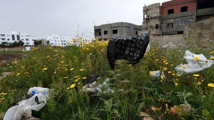 Tout le pays est constellé de sacs en plastique divers. (FETHI BELAID / AFP)