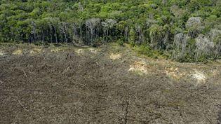 La forêt amazonienne près de la ville de Sinop, dans le Mato Grosso (Brésil), le 7 août 2020. (FLORIAN PLAUCHEUR / AFP)