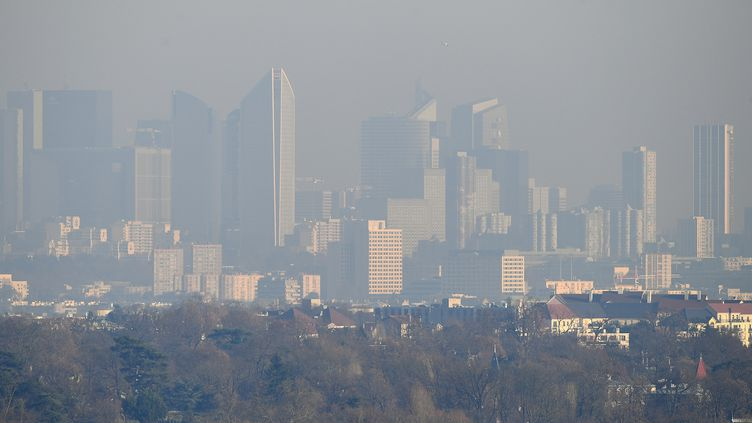 Le quartier de la Défense à Paris vu depuis Saint-Germain-en-Laye (Yvelines), lundi 5 décembre. (FRANCK FIFE / AFP)