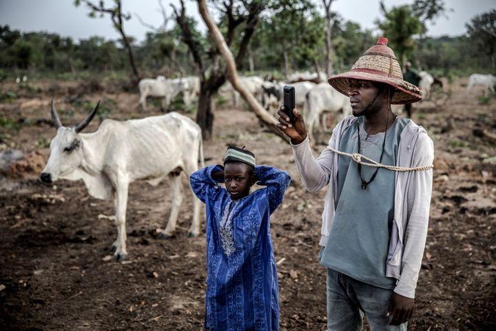 Un berger Fulani prend en photo son troupeau sur son portable, dans l'Etat de Kaduna, en avril 2019. Au Nigeria, comme dans de nombreux pays d'Afrique, l'usage du téléphone portable est devenu incontournable. (LUIS TATO / AFP)