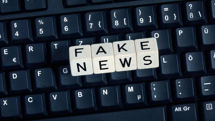 """Emmanuel Macron souhaite proposer un texte pour lutter contre """"les fausses informations"""". (SASCHA STEINACH / DPA-ZENTRALBILD / AFP)"""