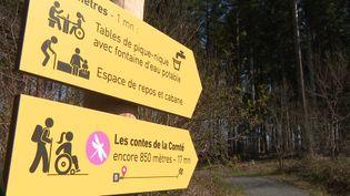 Le sentier de la forêt de la Comté dans le Puy-de-Dôme accessible aux personnes en situation de handicap. (CAPTURE D'ÉCRAN FRANCE 3)