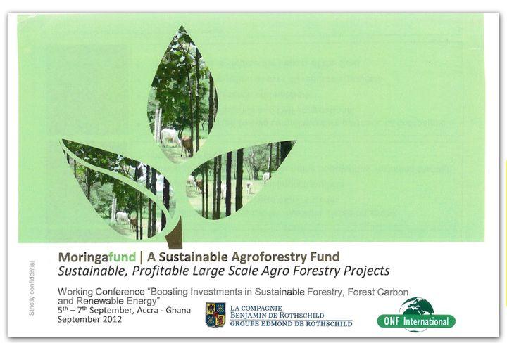 Extrait du projet de participation d'une filiale de l'ONF au capital d'une société en lien avec un fonds spécialisé dans l'agroforesterie, le fond Moringa. (DR)