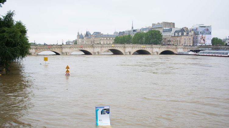 La Seine etle Pont Neuf, à Paris, le 3 juin 2016. (CITIZENSIDE / LUCAS ARLAND / AFP)