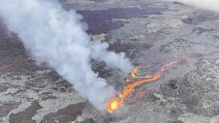 Pour la première fois, cette année, le Piton de la Fournaise, sur l'île de La Réunion, est entré en éruption, vendredi 9 avril. Cet événement dure en général jusqu'à vingt jours. L'accès au sommet est interdit au public. (France 3)