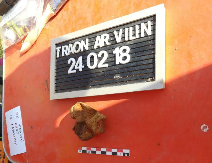 Un os découvert dans le jardin de la famille Seznec à Morlaix (Finistère), pris en photo le 24 février 2018. Il s'est avéré qu'il s'agissait d'un ossement animal. (BERTRAND VILAIN / AFP)