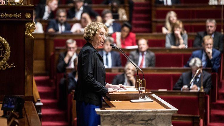 La ministre du Travail Muriel Pénicaud à l'Assemblée nationale lors des discussions sur le projet de loi d'habilitation sur la loi Travail, le 10 juillet 2017. (MAXPPP)