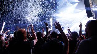 Le public du festival Rock en Seine lors du concert du groupe electro-danse Major Lazer, à Saint Cloud (Hauts-de-Seine), le 24 août 2019. (AFP)
