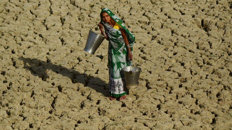 Une Indienne cherche de l'eau potable, le 25 avril 2017, à Allahabad. (RITESH SHUKLA / NURPHOTO / AFP)