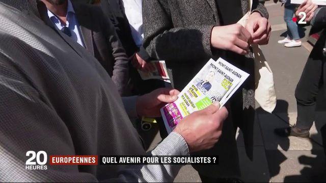 Européennes : quel avenir pour le Parti socialiste ?