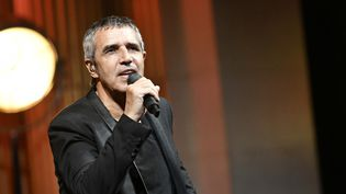 Julien Clerc est au programme des Francofolies de La Rochelle  (Dan Pier / Crowdspark / AFP)