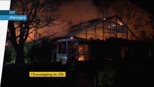 Incendie dans un zoo en Allemagne (FRANCEINFO)
