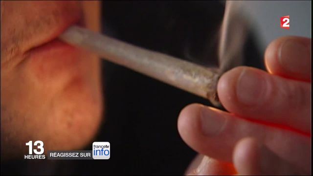 Cannabis : la dépénalisation de retour dans le débat