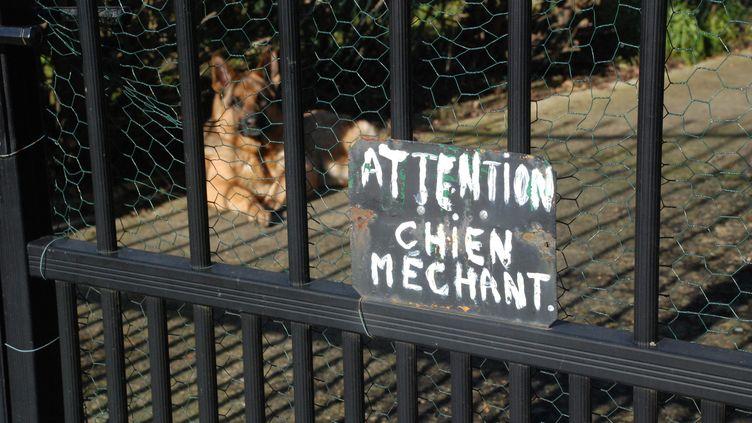 Un chien derrière un portail (illustration). (SEBASTIEN JARRY / MAXPPP)