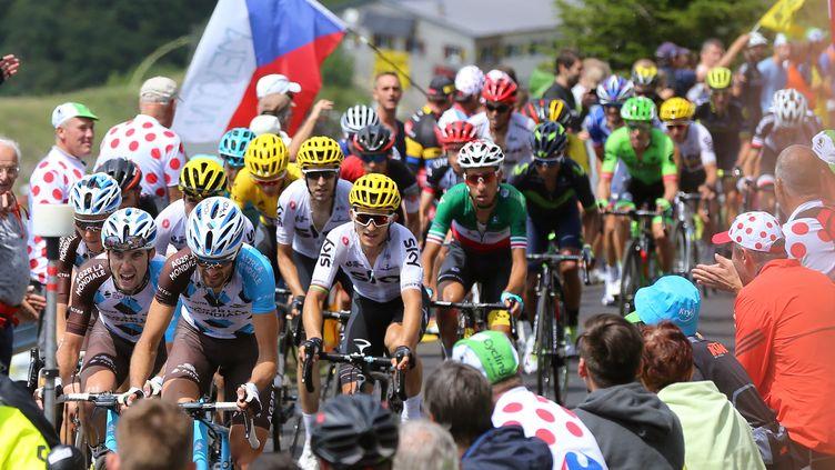 Le peloton du Tour de France 2017 sur la route de la 9e étape entre Nantua et Chambéry. (DE WAELE TIM / TDWSPORT SARL)