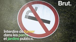 VIDEO. À Strasbourg, il est désormais interdit de fumer dans les parcs et jardins publics (BRUT)