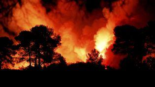 Le massif des Maures en proie aux flammes, le 17 août 2021 dans le Var. (FRANK MULLER / MAXPPP)