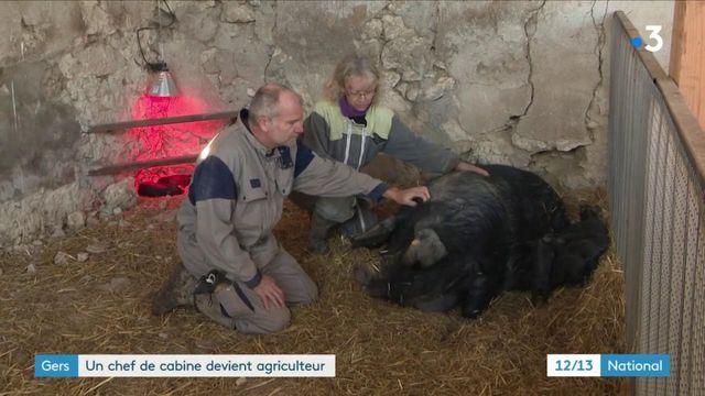 Gers : un chef de cabine d'Air France est devenu agriculteur