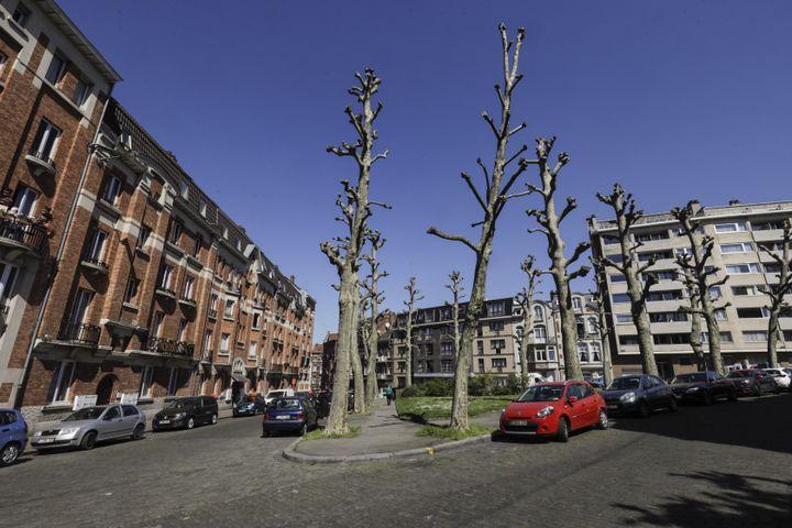 Le square de la rue Jacques Rayé, le 8 mai 2018 à Schaerbeek (Belgique). (THIERRY ROGE / BELGA MAG)