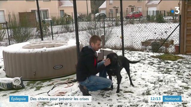 Épilepsie : des chiens pour prévenir les crises