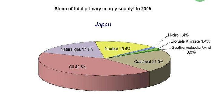 Production d'énergie estimée par l'Agence internationale de l'énergie en 2009. (FTV)