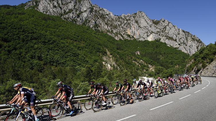 Le peloton s'attaque aux Alpes (ERIC FEFERBERG / AFP)