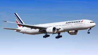 Un Boeing 777 de la compagnie Air France s'apprête à atterrir à Paris Orly, le 16 août 2018. La compagnie ne peut plus garder ces gros porteurs, victimes de la crise. (DPA / PICTURE ALLIANCE / AFP)