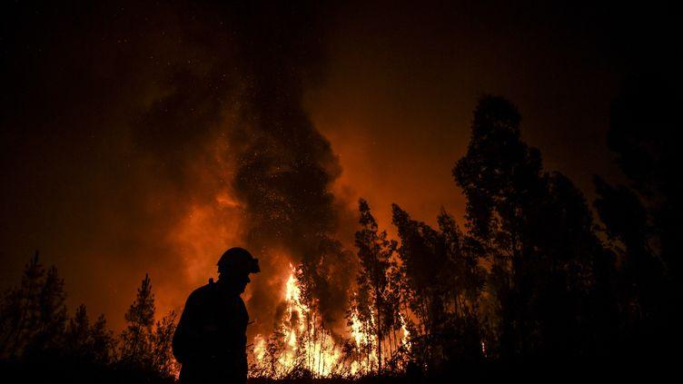 Un pompier lutte contre le feu le 21 juillet 2019 àAmendoa, au Portugal. (PATRICIA DE MELO MOREIRA / AFP)