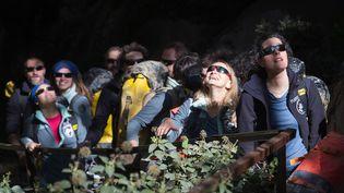 Les volontaires sortent de la grotte de Lombrives (Ariège), samedi 24 avril, après 40 jours d'enfermement. (FRED SCHEIBER / AFP)