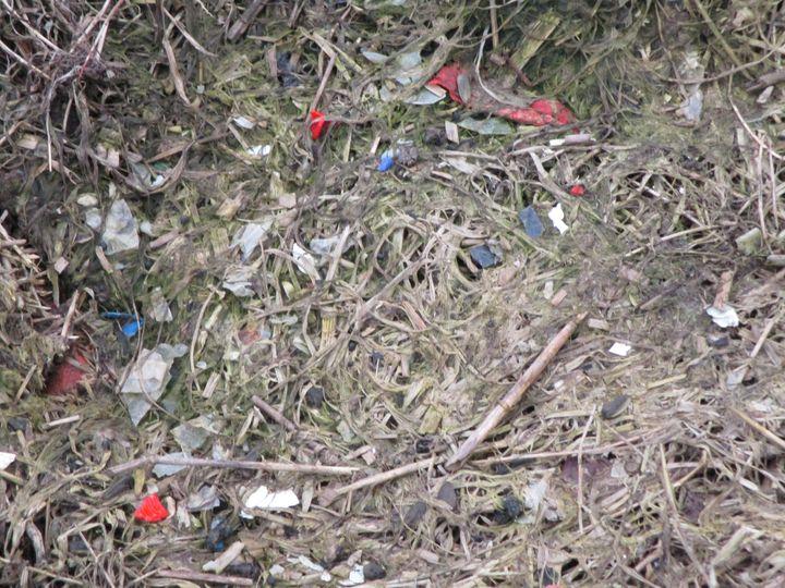 Début 2017, l'Association pour une méthanisation raisonnée en Roumois a photographié des déchets plastiques dans un champ après épandage. (DR)
