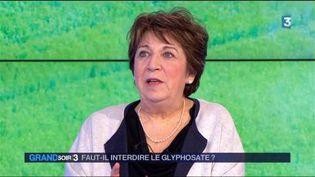 Corinne Lepage, ancienne ministre de l'Environnement. (FRANCE 3)