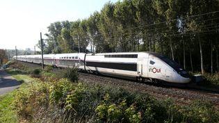 Un TGV Inoui circule entre Bordeaux et Toulouse, le 24 septembre 2021. (SEBASTIEN LAPEYRERE / HANS LUCAS / AFP)