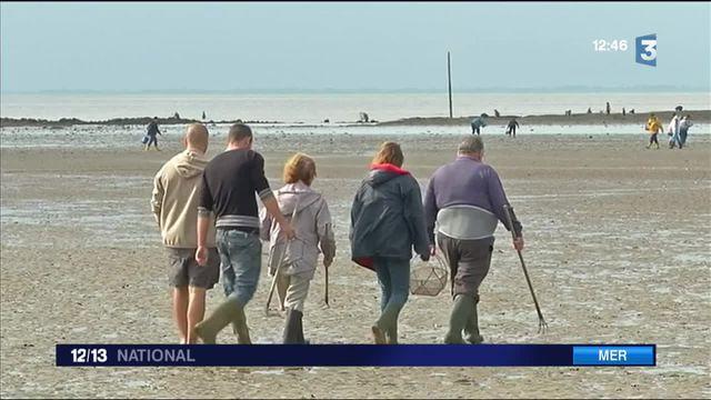 Loisirs : le retour des grandes marées