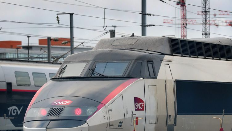Un TGV à l'arrêt à la gare de Lille-Flandres, le 28 janvier 2019. (ALEXIS CHRISTIAEN (PIB) / MAXPPP)