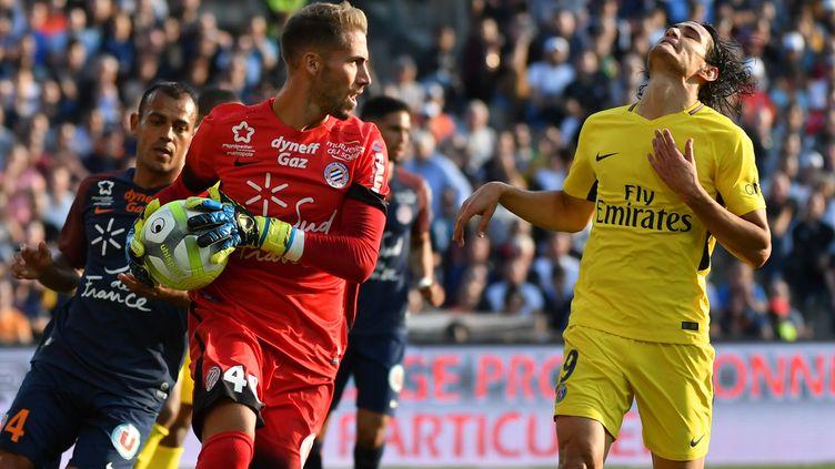 Edinson Cavani et le PSG impuissants face à Montpellier (PASCAL GUYOT / AFP)