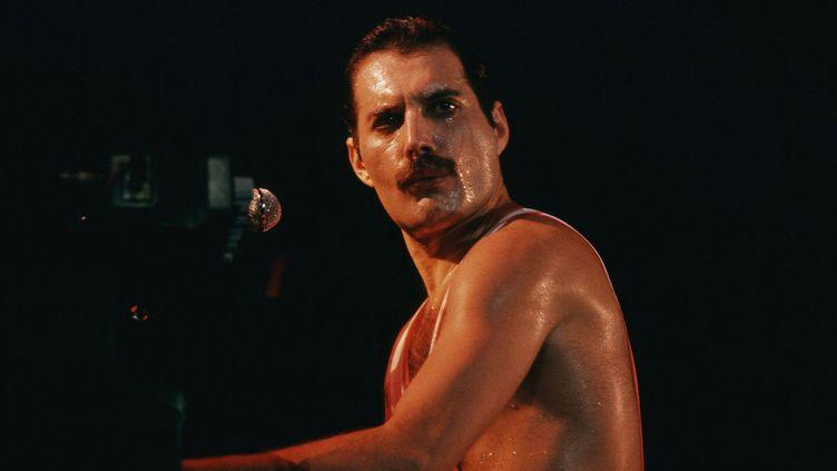 Freddie Mercury, leader de Queen, sur scène en 1980.  (The picture-alliance //MaxPPP)