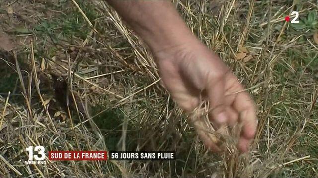 Sud de la France : 56 jours sans pluie