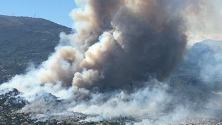 A Carros-les-Plans, au-dessus de la zone industrielle, le feu a pris violemment le 24 juillet 2017. (MAXPPP)