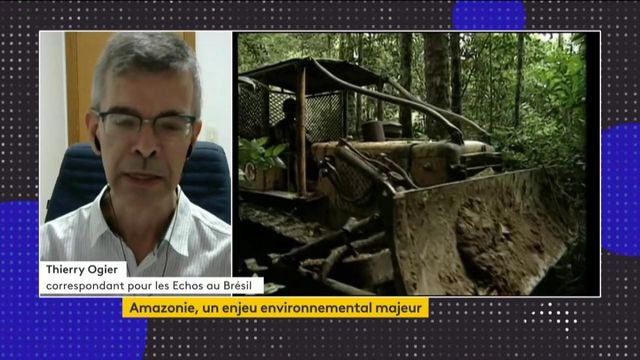 Amazonie : plainte, concertations… une nouvelle mobilisation pour tenter de préserver la forêt