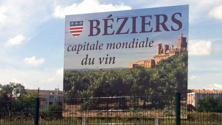 D'après les données publiques communiquées par les douanes ce mercredi, la France a produit 45 562 133 hectolitres (4 milliards 556 millions de litres) de vin l'an dernier. (GREGOIRE LECALOT / RADIO FRANCE)