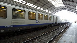 Un TER en gare d'Avignon (Vaucluse), le 10 novembre 2004. (MAXPPP)