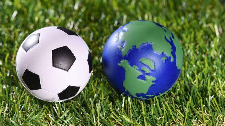 L'association Football Ecologie France a créé le concept d'éco-supportérisme. (BELPRESS / MAXPPP)