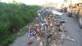 La mairie de Roubaix (Nord) compte utiliser des détectives privés pour lutter contre des dizaines de dépôts d'ordures sauvages, annonce la municipalité. (FRANCE 3 NORD PAS-DE-CALAIS)